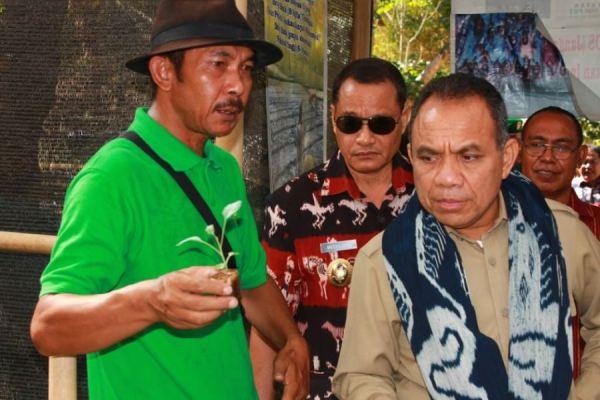 Pak Rahmat ( Kang Bayan / Baju Hijau ) menjelaskan tentang wadah semai dari daun pisang kepada Gubernur NTT saat kunjungan ke kebung KTO Kawara Pandulang HPS NTT 18 Oktober 2013 [ Foto : heinrich Dengi ]