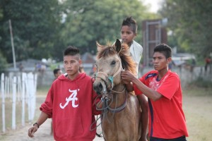 Saat Selesai Lomba di Pacuan Kuda di Waingapu Sumba Timur [ Foto - Max FM Waingapu - Heinrich Dengi ]