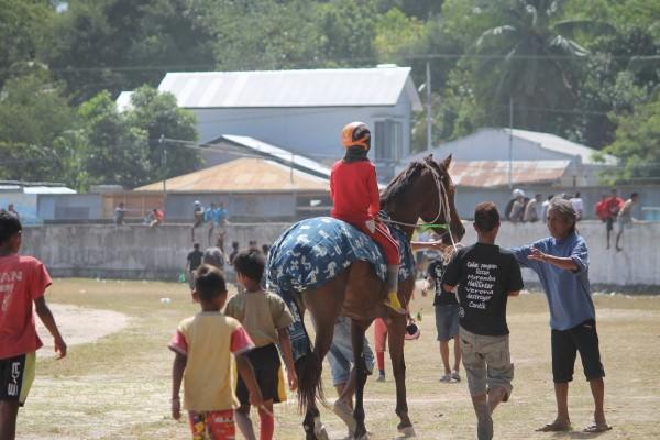 Kuda Juara Dengan Kain Sumba [ Foto : Heinrich Dengi ]