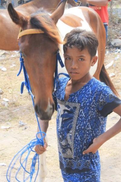 Ini kuda ku, mana kuda mu? [Foto: Heinrich Dengi]
